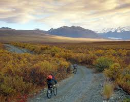 The Denali Highway – Biking