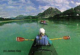 Kayaking-Glacier-Bay