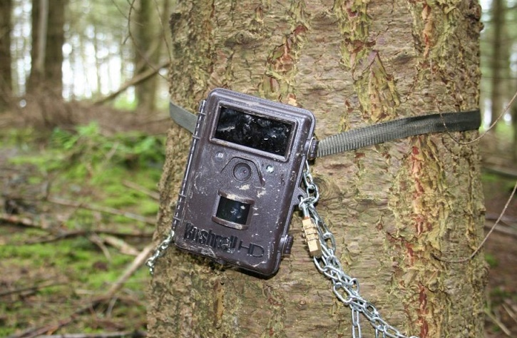 bushnell-trophy-cam-hd-essential